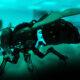 Black Hornet Robot