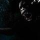 Raka Otang - A South African Bigfoot