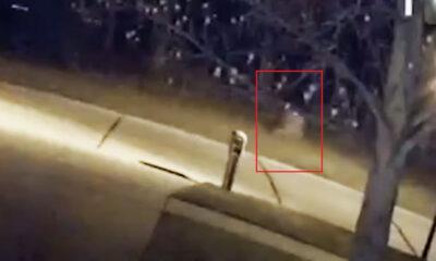 Ghost Child Caught on Camera