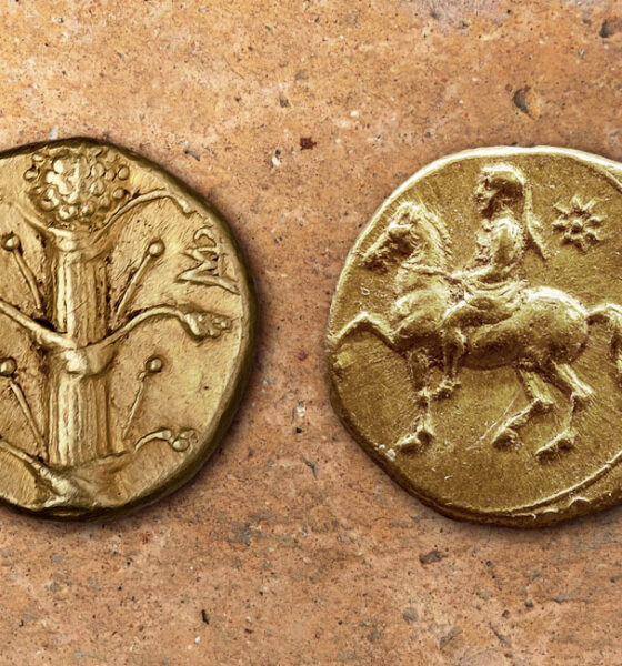 Gold Silphium Coins - 308 - 277 BC